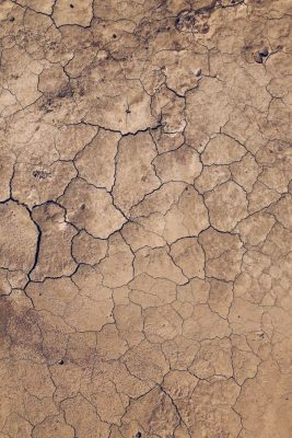 Dry soil which can cause foundation problems in Brisbane (1)